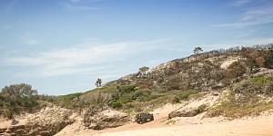 Fraser Island Adventure 2013 Location Picture #511