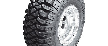 Photo of a Mickey Thompson MTZ