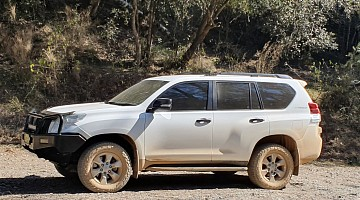 Picture of a Toyota Not_listed Prado 0