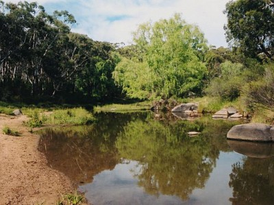 Picture of Wattle Flat
