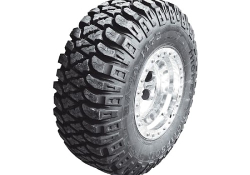 Photo of Mickey Thompson MTZ